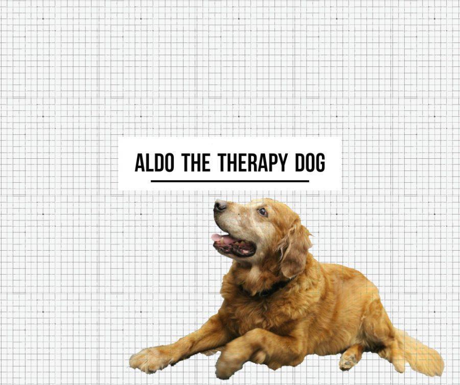 aldo-therapy