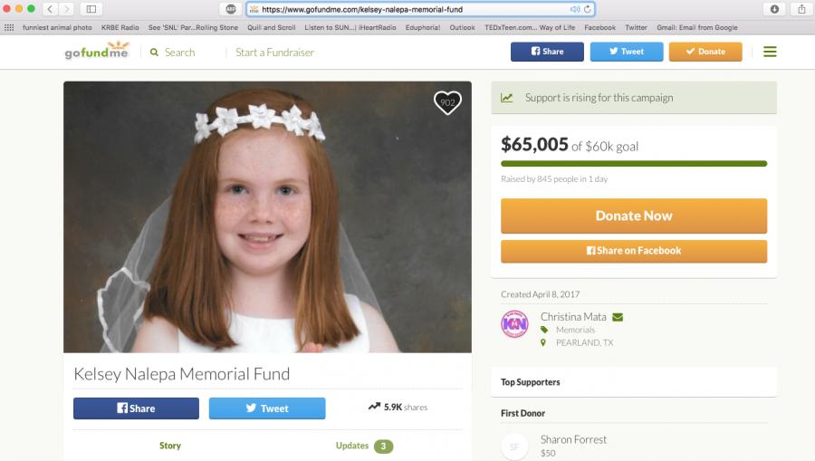 Fundraising+for+CCISD+Nalepa+family