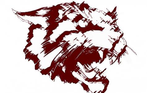 Meet the Wildcats 2019