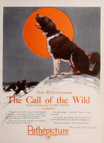 Advertisement for The Call of the Wild film adaptation by Fred Jackman.