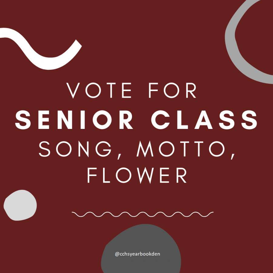 Vote+for+senior+class+song%2C+motto%2C+%26+flower